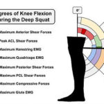 Thoughts on Squats #1 – Squatting for Function