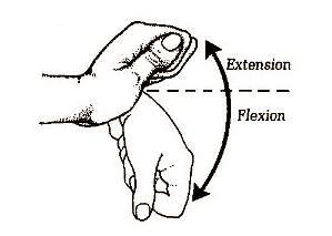 wriste extension